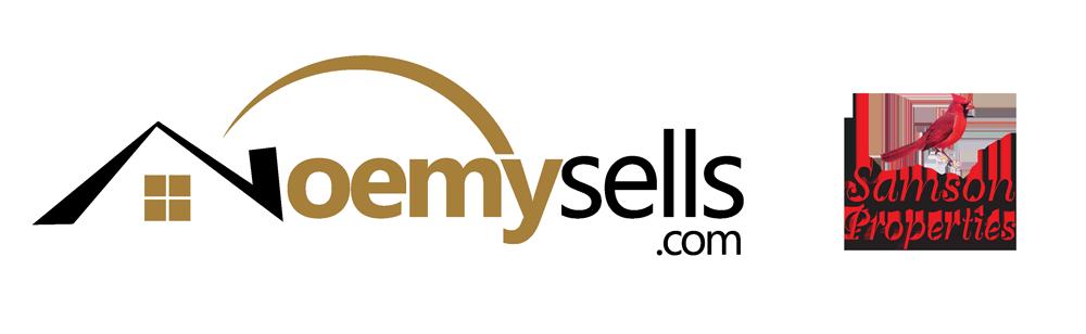 NoemySells.com